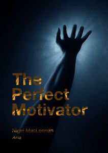 The Perfect Motivator Book Cover